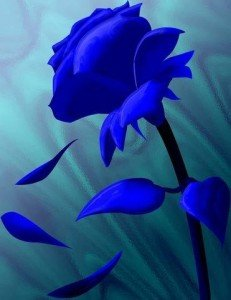 La musique des mots dans Citations rose-bleu-L-11-231x300