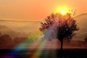 dans Evasion lever-soleil-campagne-423723-300x200